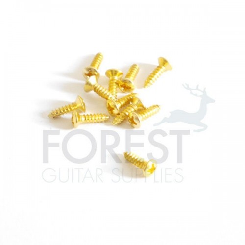 Pickguard screw Fender® size oval head gold 3x12mm