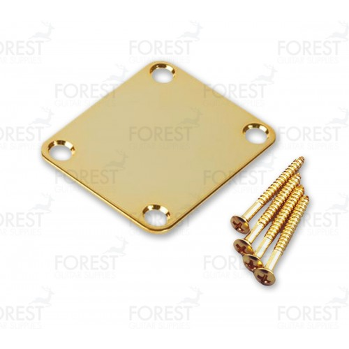 Fender ® aftermarket neck joint plate + screws, HN001, gold
