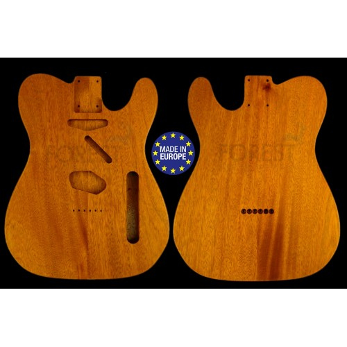 Telecaster ® 50s Body Electric guitar 2 pieces Honduras Mahogany vintage style ,unique