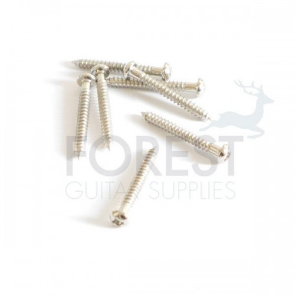 Single coil pickup screw round head chrome 3x25mm, unit